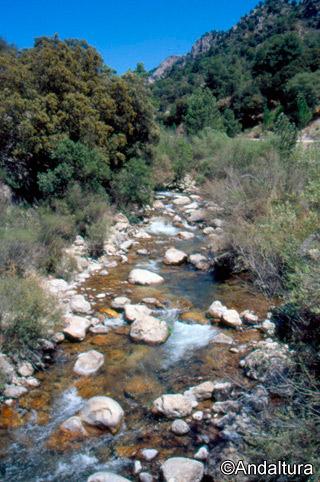 Rio Castril