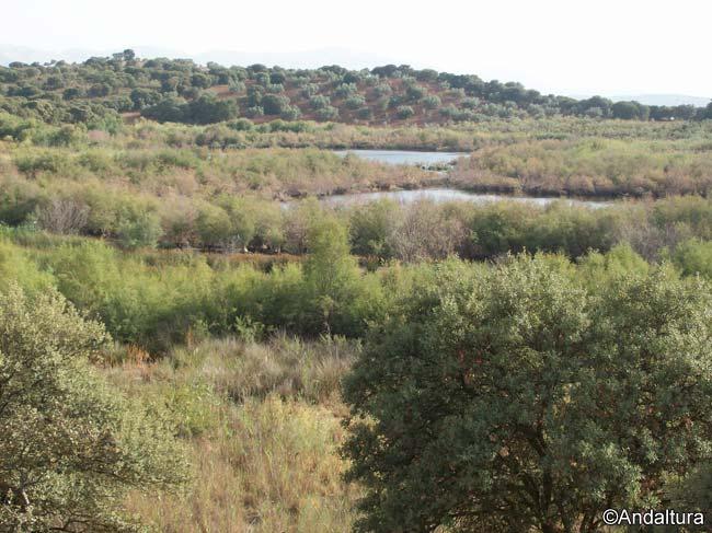 Entorno de la Laguna Chica