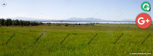 Cultivos y Laguna de Fuente de Piedra vistos desde el oeste