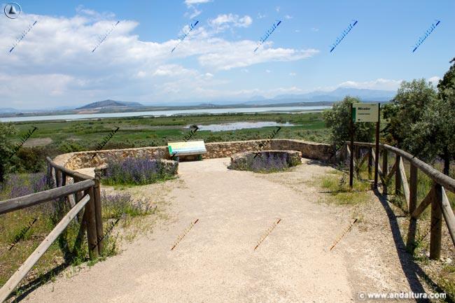 Mirador de Cantarranas y Laguna de Fuente de Piedra