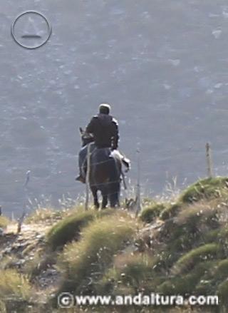 Actividad, Rutas a Caballo en Andalucía