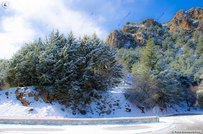Carretera de acceso a la Estación de Esquí Sierra Nevada, A-395
