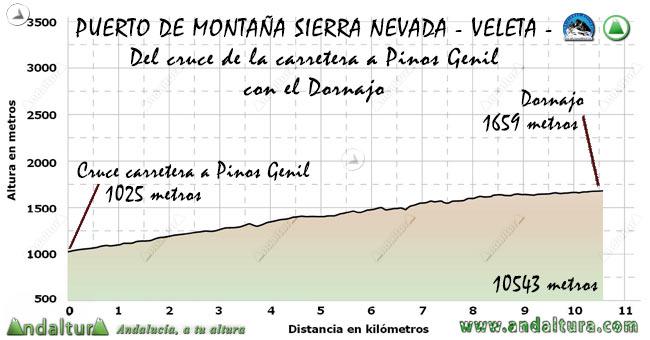 Perfil del Puerto de Montaña al Veleta, desde el cruce de Carreteras al Dornajo
