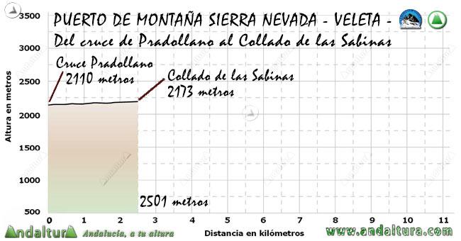 Perfil del Puerto de Montaña al Veleta, desde el cruce de Pradollano al Collado de las Sabinas