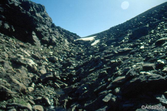 Zona alta del río Lanjarón