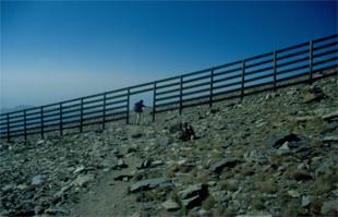 Atravesando las pistas de la Estación de Esquí Sierra Nevada