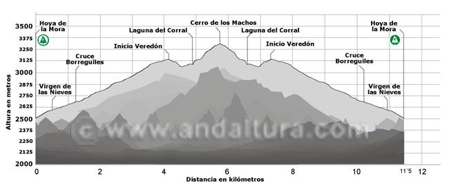 Perfil de la ruta de Alta Montaña desde la Hoya de la Mora al Cerro de los Machos y regreso