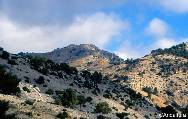 Cerro del Buitre