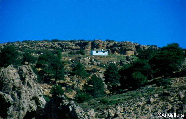 Refugio de los Prados del Buitre
