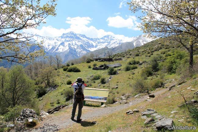 La Alta Montaña desde el Mirador del Cortijo del Hornillo