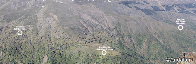 Localización de los Cortijos del Hornillo, de Cabañas Viejas y de las ruinas del Cortijo del Hoyo