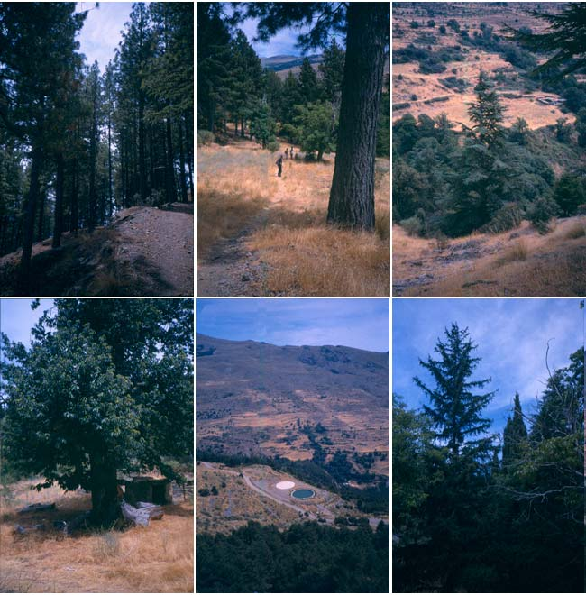 Imágenes de la zona de Tello antes del incendio