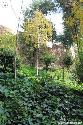 Torre de los Abencerrajes ocultada por el Bosque