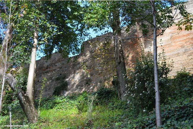 Torre de los Abencerrajes desde las cercanías de la Puerta de los Carros