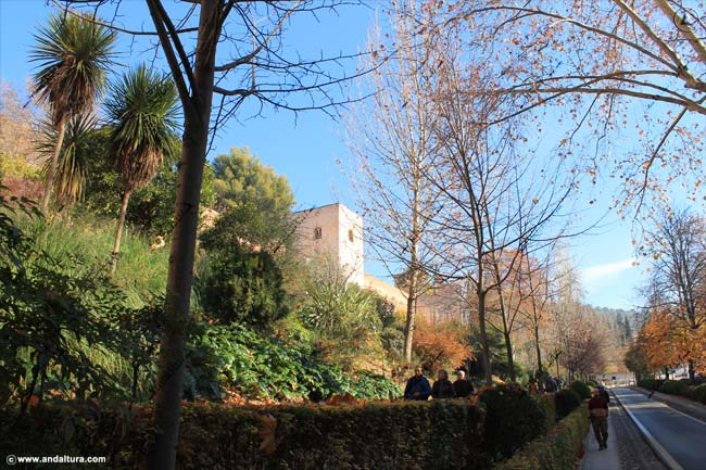 Torre Baltasar de la Cruz desde el Paseo del Generalife