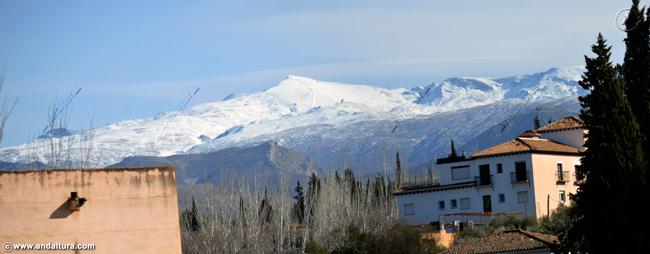 Detalle de la Terraza de la Torre de Baltasar de la Cruz y Sierra Nevada