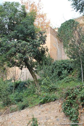 Jardines, Muralla y Torre de la Barba