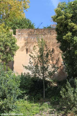 Torre de la Barba desde la Placeta de la Explanada