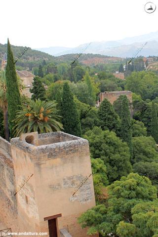 Torres y Bosque de la Alhambra