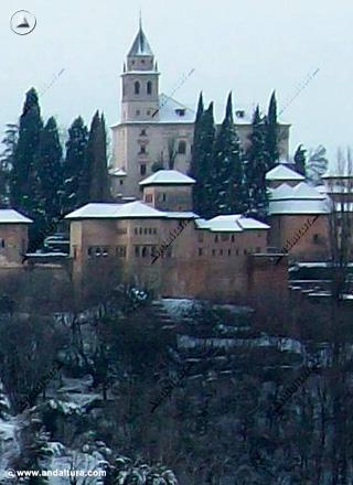 Vista nevada del Palacio del Partal