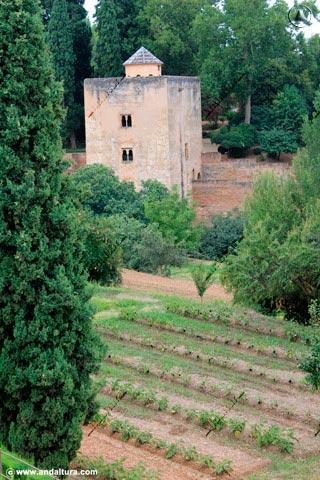 Huertas del Generalife y Torre de las Infantas
