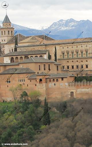 Torre de Machuca y Palacios Nazaríes
