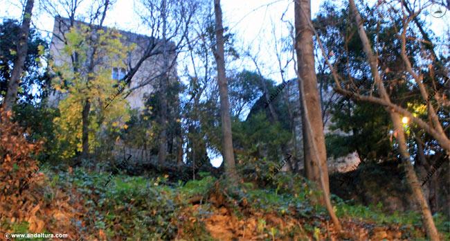 Vertiente sur desde el Bosque de la Sabika