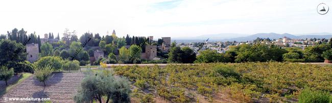 Torres de la Alhambra y el Albaycín desde el Generalife