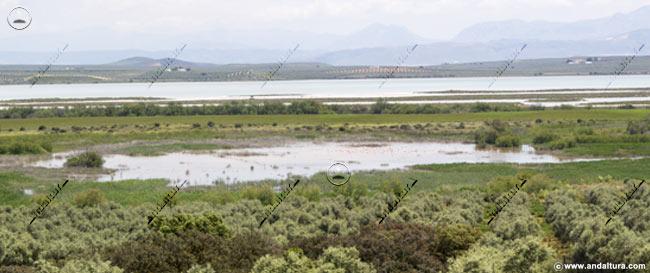 Laguna de Cantarranas