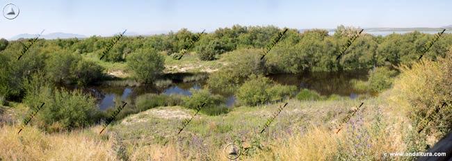 Laguna de los Abejarucos desde el Observatorio del mismo nombre