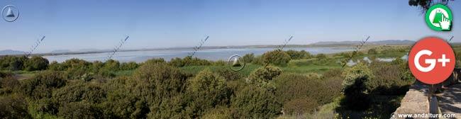 Vistas desde el Mirador del Cerro del Palo