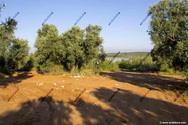 Camino a la cuenca de la Laguna de la Ratosa