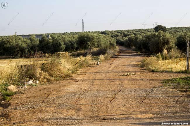 Comienzo de la pista hacia la Laguna de la Ratosa desde Los Carvajales
