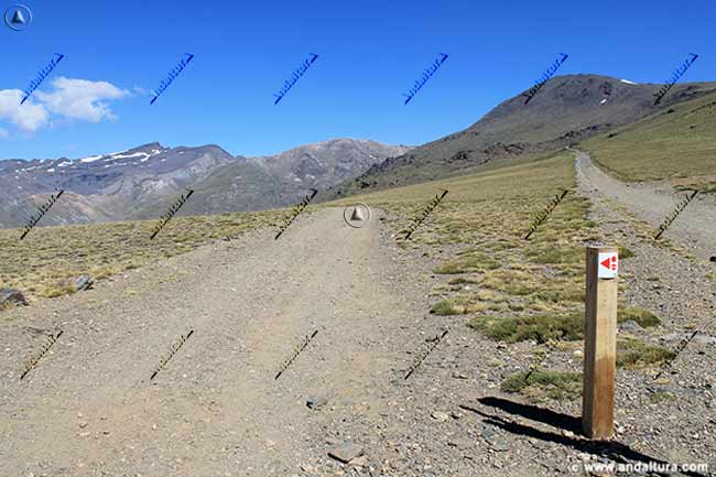 Pista al Refugio Poqueira, ruta transnevada, y continuación al Veleta