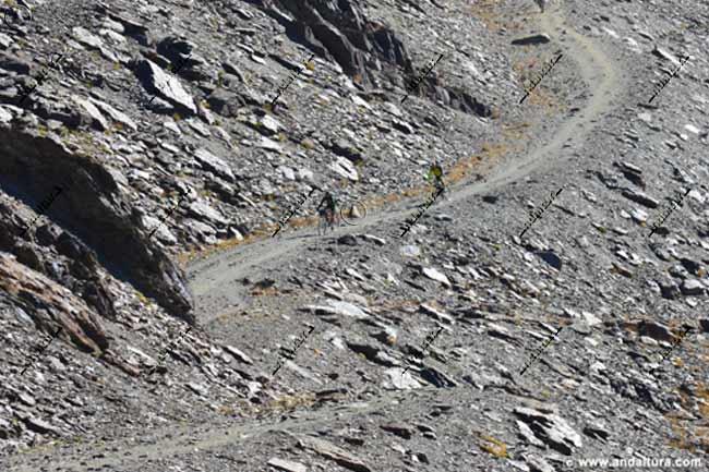 Vereda por la pista, a cota 3000 metros